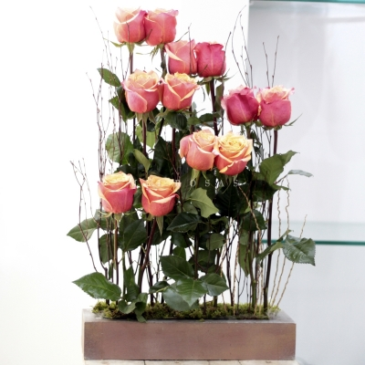 Partitura de Rosas