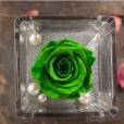 Perla Verde Esperanza
