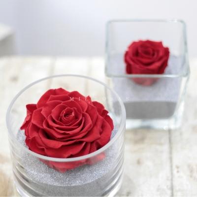 Perla Rojo Pasión XXL