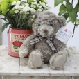 Osito Teddy Grey