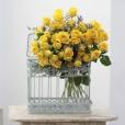 Bouquet Spray Amarillo