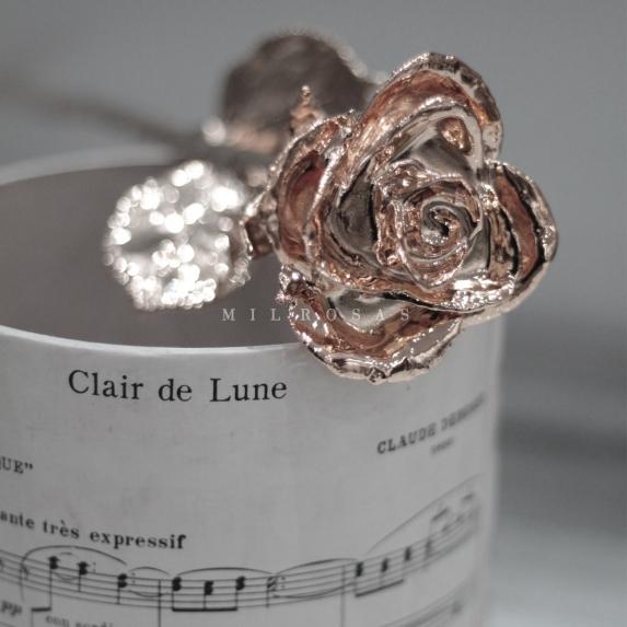 Rose Gold Rose, Rosa de Oro Rosa