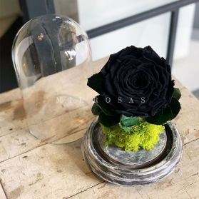 Joya Totem Rosa Negra