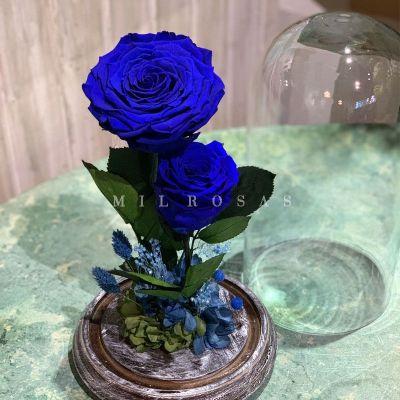 Rosa Joya Blue (Bella y Bestia)
